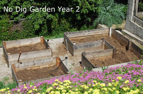 how to get rid of skunks digging in garden
