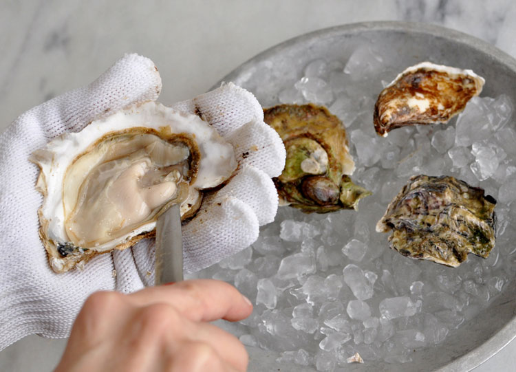 Post image for Oysters Part 2- How to Buy, Clean, and Open Raw Oysters