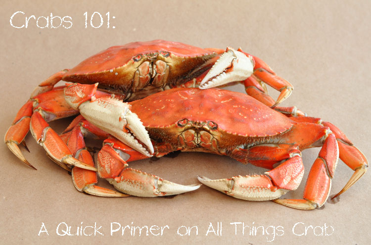 Crabs 101-A Quick Primer on All Things Crab from FormerChef.com