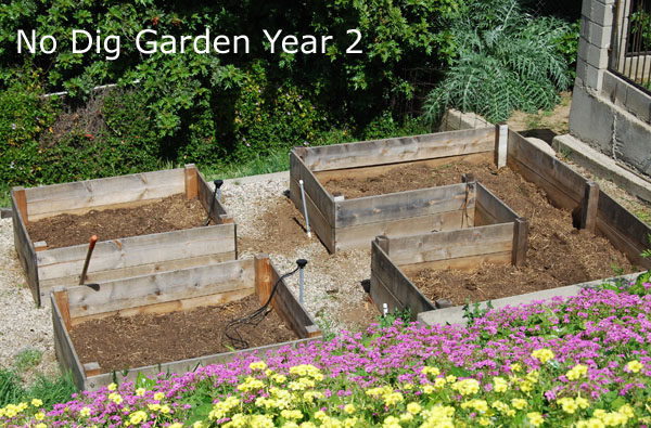 "We're now ready to get the garden beds prepped and begin ""No Dig Gardening, Year Two"". The first chore I had to do was get rid of the ..."