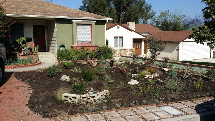 how to lose the lawn and create a water wise front yard former chef. Black Bedroom Furniture Sets. Home Design Ideas